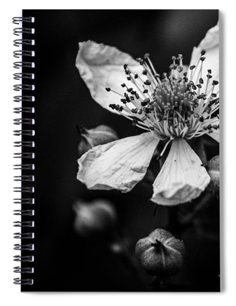 Solo In Ballet Spiral Notebook