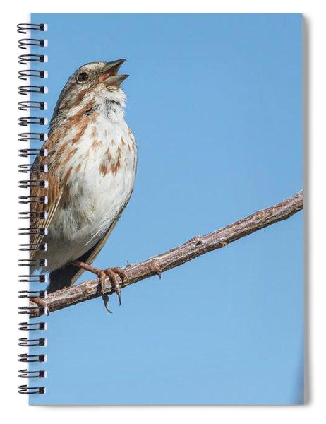 Song Sparrow 4179-040318-1cr Spiral Notebook