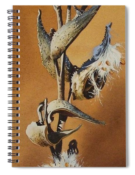 Song Sparrow And Milkweed Spiral Notebook