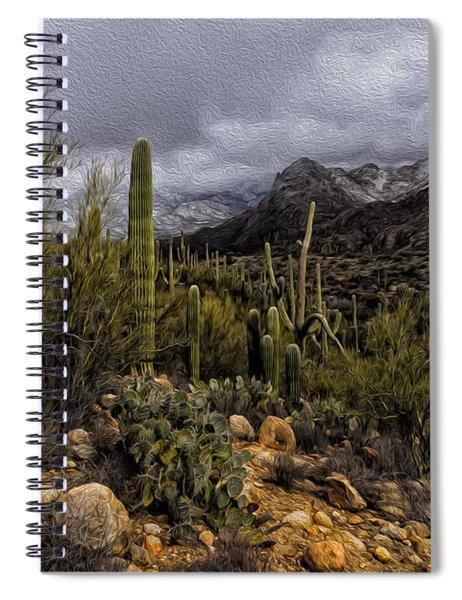 Sonoran Winter No.3 Spiral Notebook