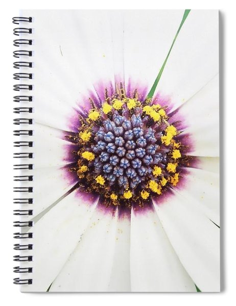 Soprano White Spiral Notebook