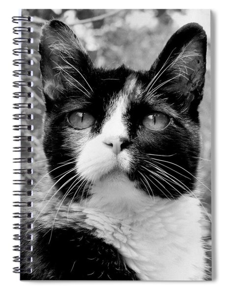 Souls Great And Small Spiral Notebook