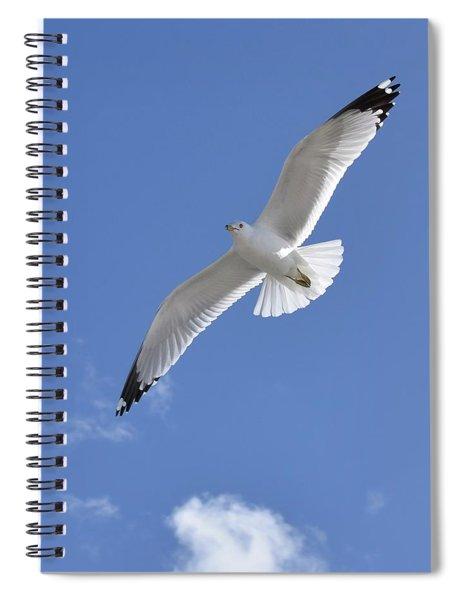 Souring High  Spiral Notebook