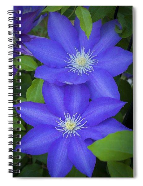 South Carolina Color Spiral Notebook
