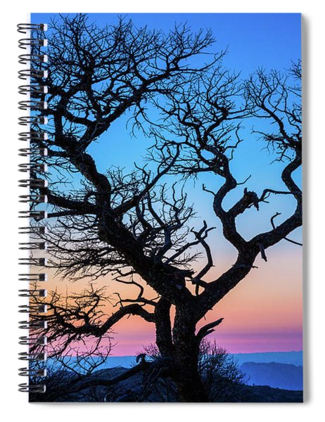 South Rim Tree Spiral Notebook