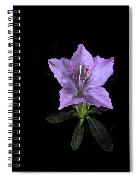 Southern Indica Azalea 2 Spiral Notebook