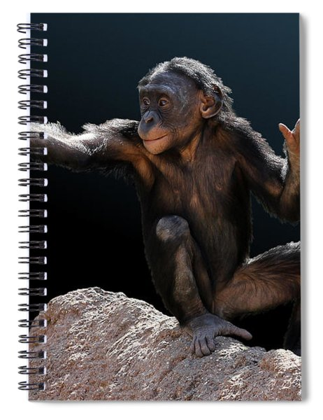 Spare Change? - Bonobo Spiral Notebook