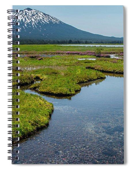 Sparks Spring Bloom  Spiral Notebook