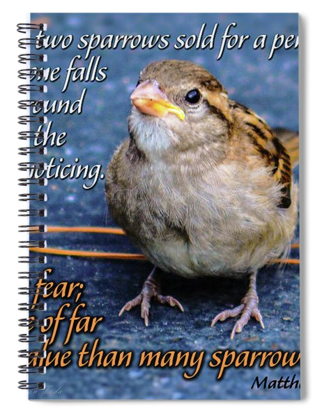Sparrow Scripture Matthew 10 Spiral Notebook