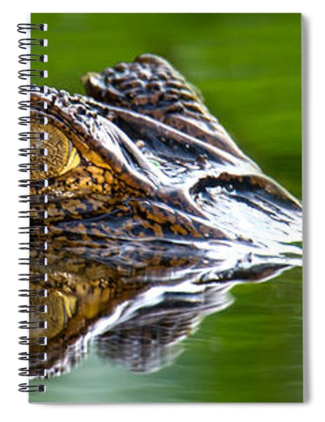 Spectacled Caiman Caiman Crocodilus Spiral Notebook