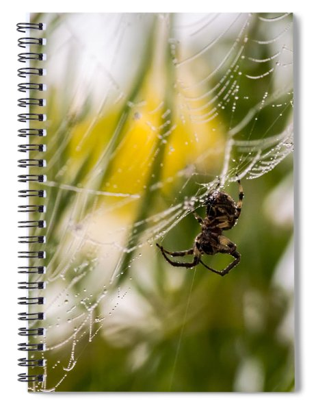 Spider And Spider Web With Dew Drops 04 Spiral Notebook