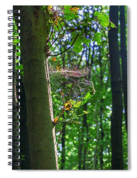 Spider Web In A Forest Spiral Notebook