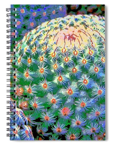 Spiral Galaxy Spiral Notebook