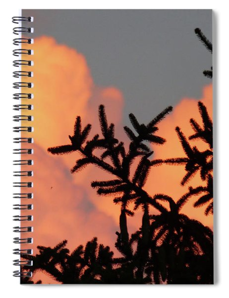 Spirit Pines Spiral Notebook