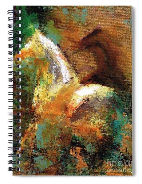 Splash Of White Spiral Notebook