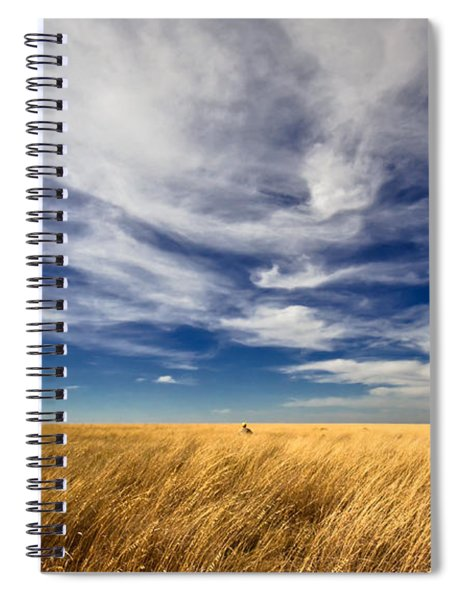 Splendid Isolation Spiral Notebook