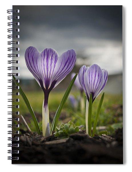 Spring Awakening Spiral Notebook