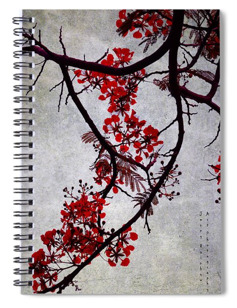 Spring Bloosom In Maldives. Flamboyant Tree II. Japanese Style Spiral Notebook