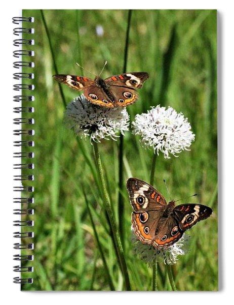 Spring Delight Butterflies Spiral Notebook