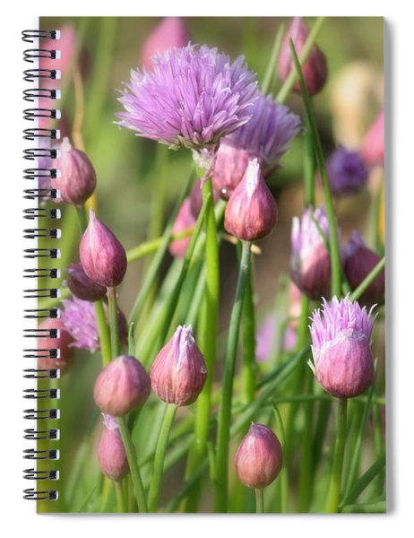 Spring Dreams Spiral Notebook