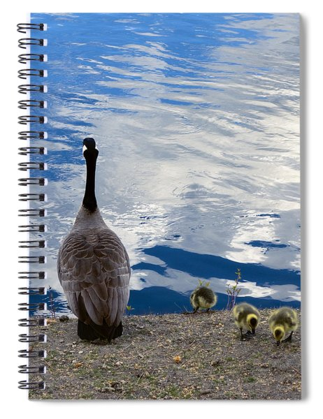 Spring Goslings And Mother Goose Spiral Notebook