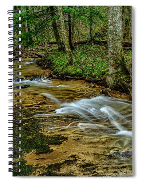 Spring Green Along Anthony Creek Spiral Notebook