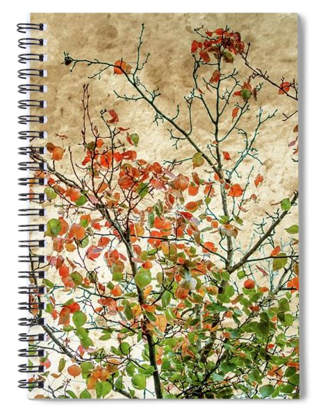 Spring Is Gone Spiral Notebook