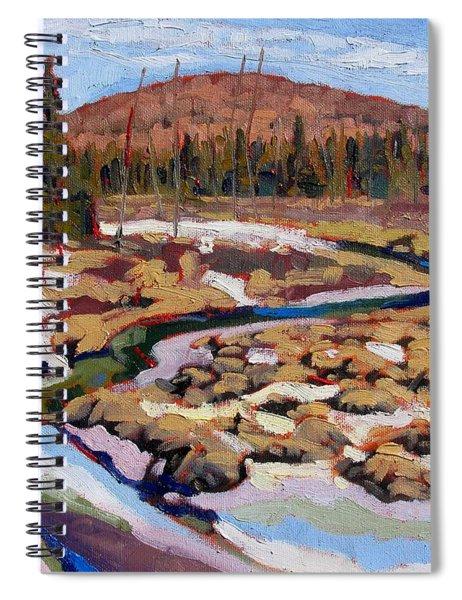 Spring Marsh Algonquin Spiral Notebook