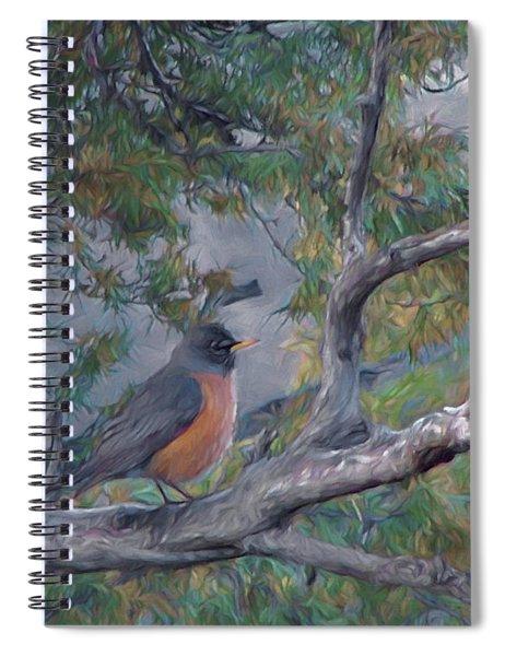 Spring Morning Robin Da Spiral Notebook