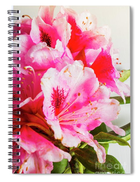 Spring Of Flower Bouquets Spiral Notebook