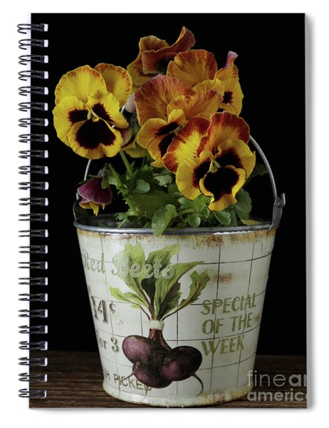 Spring Pansy Flowers In A Pail Spiral Notebook