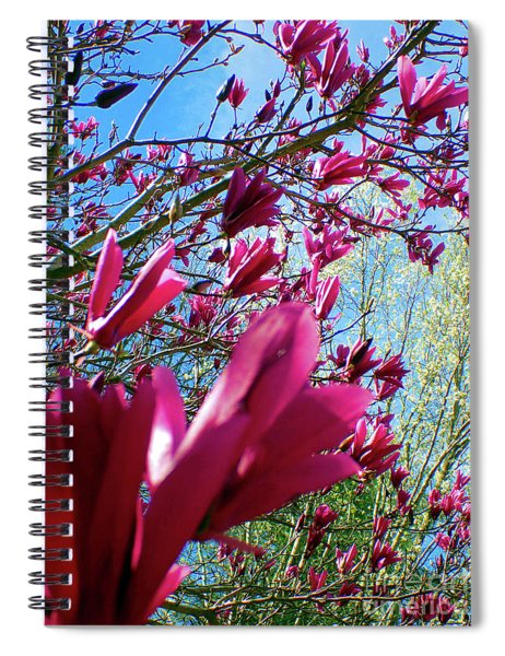 Spring Sky Spiral Notebook