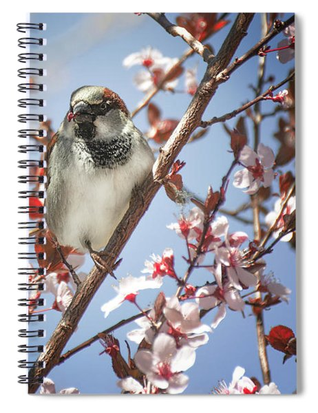 Good Place For A Snack Spiral Notebook
