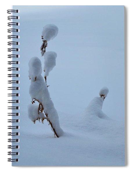 Spring Snow Spiral Notebook