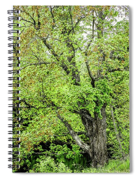 Spring Time By The River Spiral Notebook
