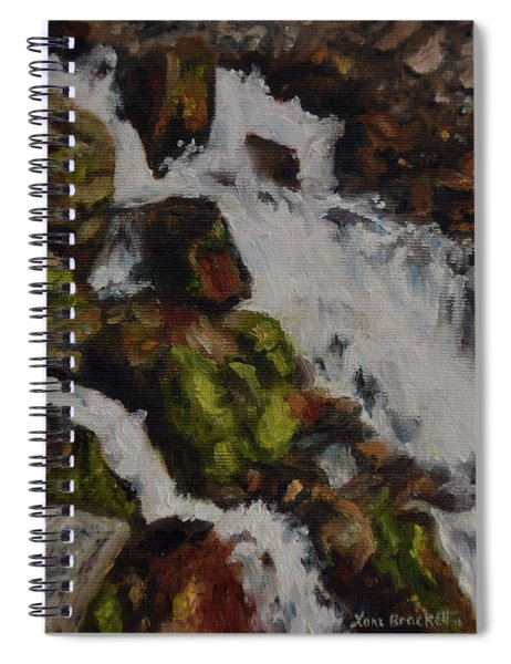 Springs Close Up Spiral Notebook