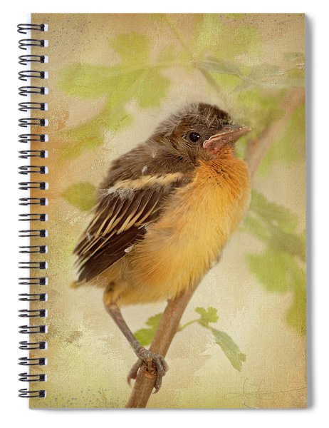 Spring's Sweet Song Spiral Notebook