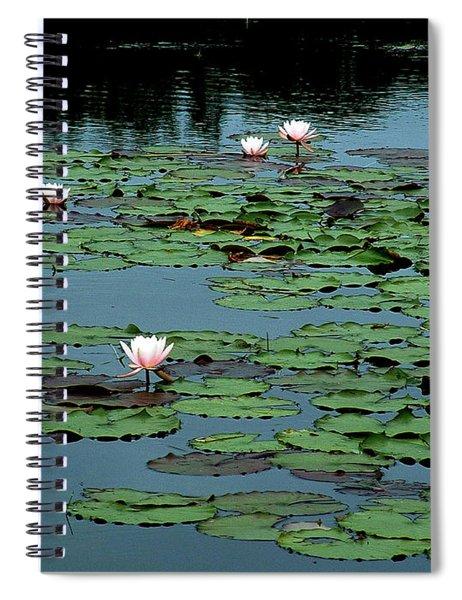 Squam Lilies  Spiral Notebook