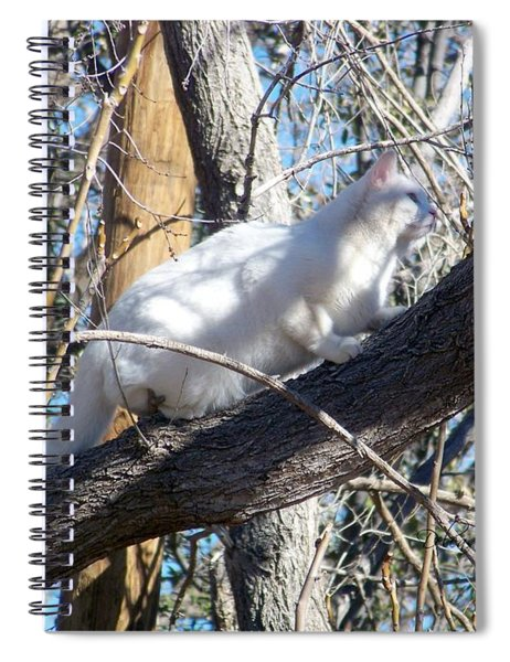 Stalking Ghost Spiral Notebook