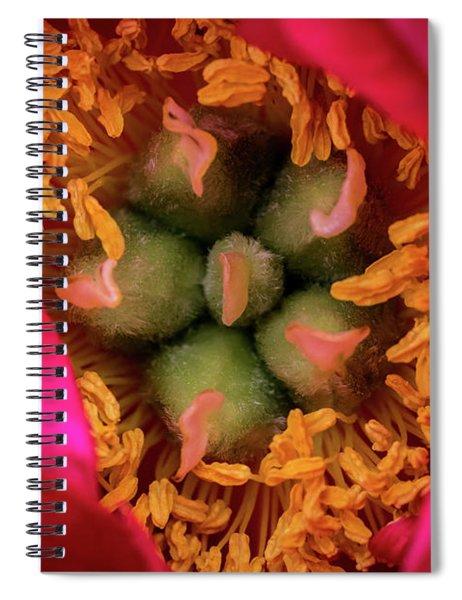 Stamen And Pistils Spiral Notebook