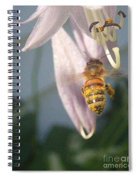 Stamen Attraction Spiral Notebook