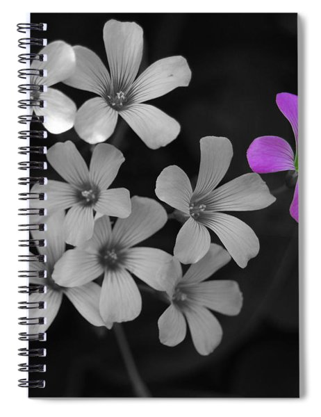 Stand Up Stand Out Spiral Notebook