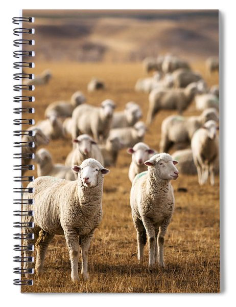 Standing Out In The Herd Spiral Notebook