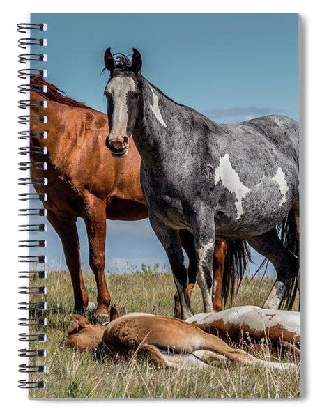 Standing Watch Over The Foals Spiral Notebook