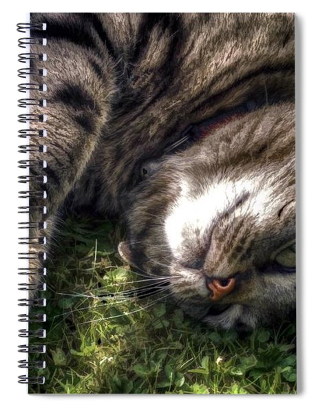 Star Spiral Notebook