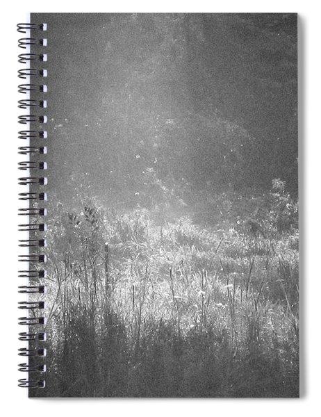 Stardust  Spiral Notebook