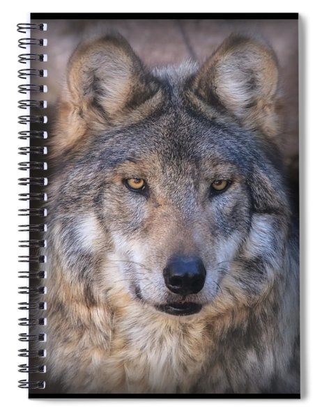 Stare Down By Sancho Spiral Notebook
