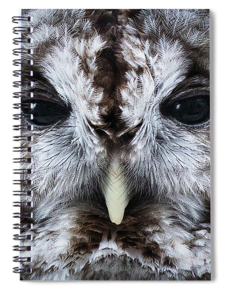 Staredown Spiral Notebook