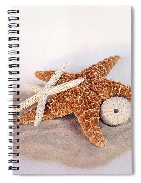 Starfish Still Life Spiral Notebook