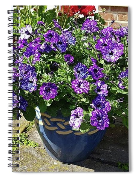 Starry Sunlit Blooms Spiral Notebook
